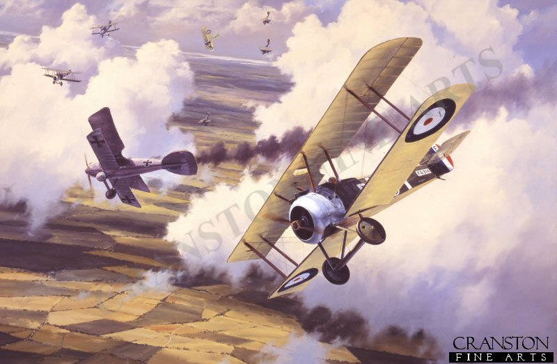 The Sopwith Camel was with the mainstay of the Royal Flying Corps.  It is shown here downing an Albatros over the Western Front.