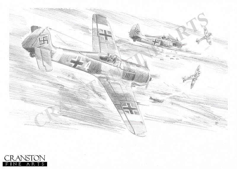 Tunisia, North Africa, 4th January 1943.  At 1600 hours, eight Fw190s from JG2 were scrambled from Kairouan airfield to intercept enemy aircraft flying recon over the Sbeitla and Fondouk areas.  The Allied formation came from Thelepte airfield and consisted of 6 Spitfires from the US 4th Fighter Squadron, 52 Fighter Group, and 6 Spitfires from the US 5th Fighter Squadron, 52nd Fighter Group, escorting 5 P-39s.  The Fw190s were south of Ousseltia when air combat with the escorting Spitfires began.  It was during this engagement that Staffelkapitan Oberleutnant Rudorffer <i>Yellow 1</i> of 6/JG2 claimed 2 of the American Spitfires.