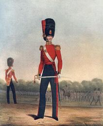 Officer of the Coldstream Guards (Winter Dress) by L Mansion & L Eschauzier (P)