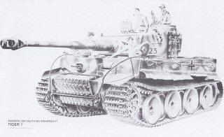 Tiger I by Randall Wilson. (Y)