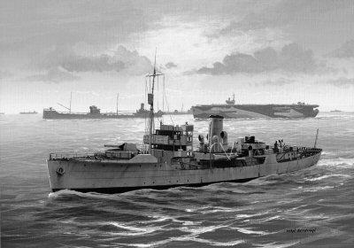 HMS Celandine by Ivan Berryman.
