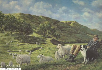 Cheviot Shepherd by Michael Kitchen Hurle