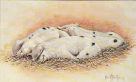 Pork Loaf by Michael Kitchen Hurle (Y)