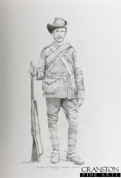 Trooper, 11th Yorkshire Dragoon Company c.1901 by Chris Collingwood. (P)