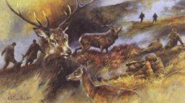 Deer Stalking by Mick Cawston.