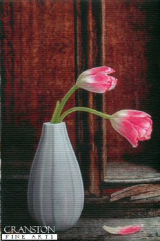 Tulips by Darren Baker. (P)
