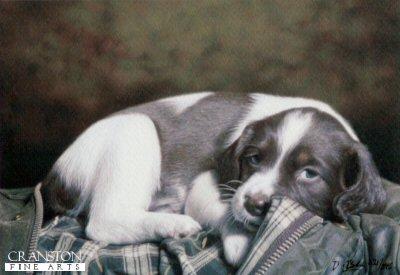 Puppy Eyes by Darren Baker.