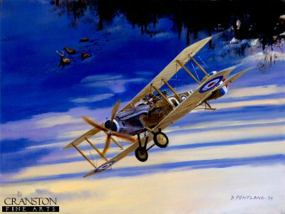 Christmas Hunt - Bristol Fighter F2B by David Pentland.