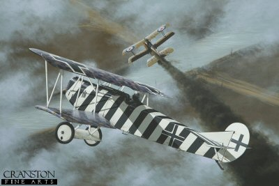 DHM1589B. Leutnant Josef Mai by Ivan Berryman. <p> Victory No 26 for Josef Mai was a 64 Squadron SE5.A on 5th September 1918, here falling victim to the guns of the aces zebra-striped Fokker D.VII 4598/18 of Jasta 5. By the end of the war, his total had risen to 30 aircraft destroyed, Mai himself collecting a number of decorations, among them the Iron Cross 1st and 2nd class. Surviving the Great War, it is believed that he became a flying instructor for the Luftwaffe during World War II, finally being laid to rest in 1982, aged ninety four. <b><p> Small signed limited edition of 50 prints. <p> Image size 12 inches x 8 inches (31cm x 20cm)
