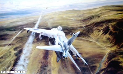 DHM2120.  Airstrike Over West Falklands by Robert Taylor. <p> A pilots eye view of the last seconds of a Mirage V at the hands of 801 Naval Air C.O., Commander Sharkey Ward, flying a Sea Harrier from H.M.S. Invincible on May 21, 1982, in a ferocious dogfight during the Battle of Falkland Sound. <p><b>Last 25 copies of this sold out edition.</b><b><p>Signed by Commander Sharkey Ward. <p> Signed limited edition of 1500 prints. <p> Paper size 25 inches x 20 inches (64cm x 51cm)