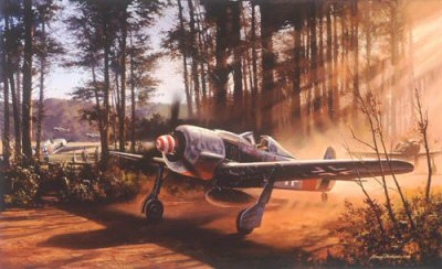 DHM2432. Timber Wolf by Nicolas Trudgian.  <p> Leutnant Klaus Bretschneider, Staffelkapitan of 5./JG300 kicks up the dust as he taxies his Fw190 A-8 Red One from its forest hiding place into the sunlight in preparation for take-off. The scene is northern Germany, November 1944. The Staffelkapitan will lead his 190s in a massed sturm intercept upon incoming American bombers. With Allied fighters dominating the skies, Luftwaffe fighter units took desperate measures to conceal their whereabouts. Commonplace were these hurriedly prepared strips, often near dense forests. <p><b>Less than 20 prints remain.</b><b><p> Signed by Oberst Hajo Hermann (deceased) and Oberfeldwebel Willi Reschke, in addition to the artist.   <p> Signed limited edition of 450 prints. <p> Paper size 19 inches x 25 inches (48cm x 64cm)
