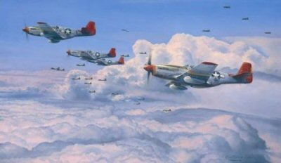 Fighting Red Tails by Robert Taylor.