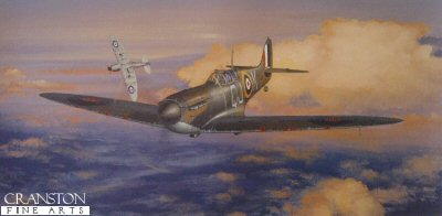 Spitfires - Masters of the Air by Philip West.