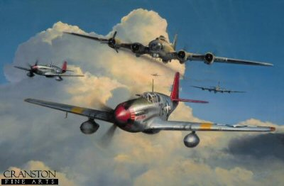 Red Tail Escort by Richard Taylor.