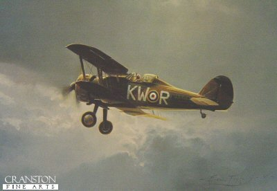 Gloster Gladiator by Robert Taylor.