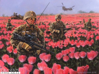 Poppy Fields by David Pentland.