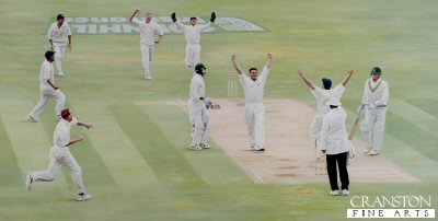The Vital Wicket by Keith Fearon.