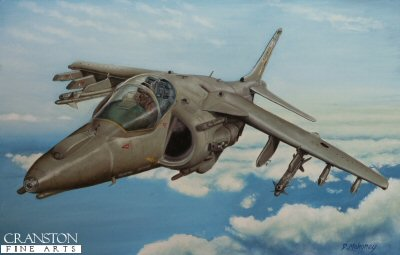 Harrier GR7 of No.20(R) Squadron by D Mahoney.