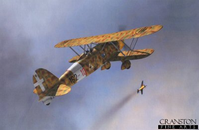 Fiat CR.42 'Falco' by Jerry Boucher.