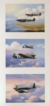 Royal Air Force WW2 Aircraft Triptych by Barry Price.
