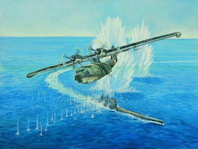 Catalina Attack by John Wynne Hopkins.