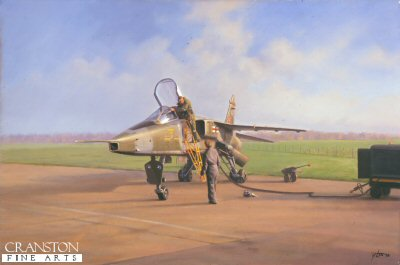 Jaguar Flight Test On by Geoff Lea.