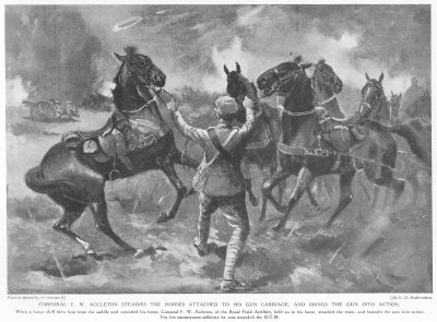 Corporal F. W. Accelton Steadies The Horses To His Gun Carriage, And Brings The Gun Into Action.