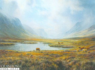 Highland Cattle, Glen Coe by Rex Preston.