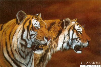 Twice the Stripes by Jonathon Truss.