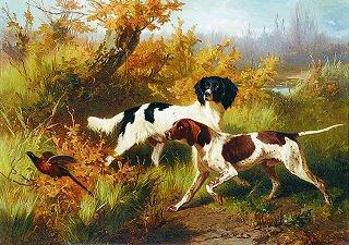 Two Spaniels Putting up a Pheasant by Conradyn Cunaeus. (GS)
