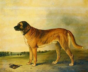 A Favourite Dog in a Landscape, 1845 by David Dalby of York (GS)