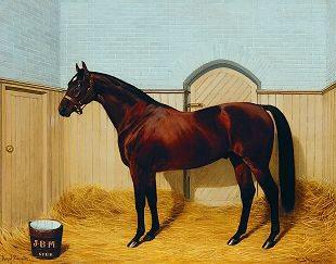 The Stallion Royal Hampton, 1903 by Emil Adam (1843-1924)