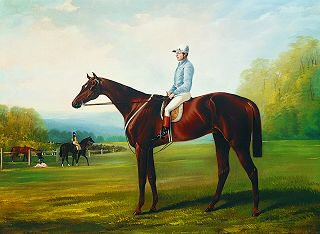 Sweetsauce with J Charlton Up. 1860 by Henry Barraud (1811-1874) (GS)