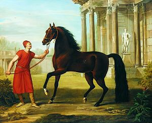 Horse Sent by H E Hadji Mohammad Cogia to George II by John Wootton. (GS)