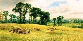 Harvesting by Robert Gallon. (GL)