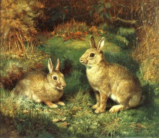 Rabbits by Henry Carter (GL)