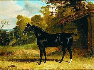 Black Tom, A Hunter, in a River Landscape by John Frederick Herring Snr (1796-1865)
