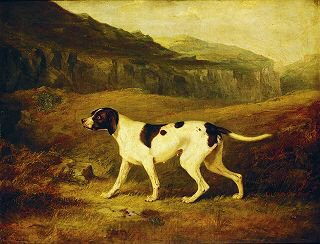A Pointer in a Landscape by Henry Calvert (GL)