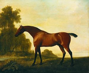A Bay Hunter in a Landscape by George Stubbs.