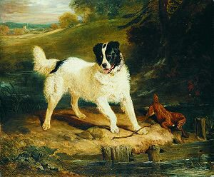 A Newfoundland Dog & an Irish Terrier by a Stream by Sir Edwin Landseer. (GS)