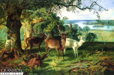Deer in the Shade by Joseph Denovan Adam (GS)