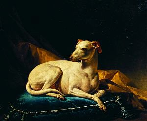 A Dog Sitting on a Cushion by Alexandre Francois Desportes (GL)