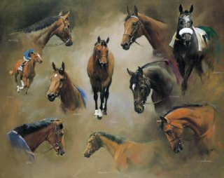 A World of Champions by Jacqueline Stanhope