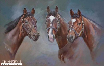 Montjeu, Sadler's Wells and Galileo by Jacqueline Stanhope.