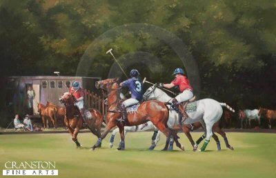 The Sporting Summer by Jacqueline Stanhope.