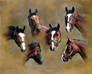 Northern Dancer and Sons by Jacqueline Stanhope.
