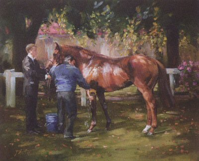 Washing Down by Jacqueline Stanhope.