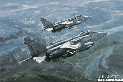 Jaguars Over Bosnia by Michael Rondot