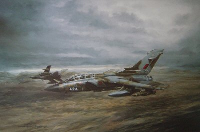 Shiny II - Tornado Recce by Michael Rondot.