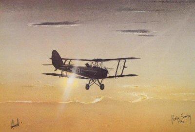 Tiger Moth by Robin Smith.